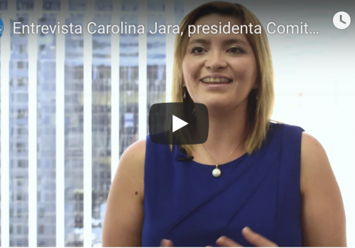 Carolina Jara de Collahuasi cuenta sobre Expo Element